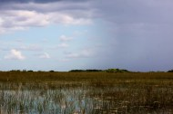 Interesting how the weather can change at Everglades.