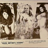 Vixen-1973-USA-classical-cover.th.jpg