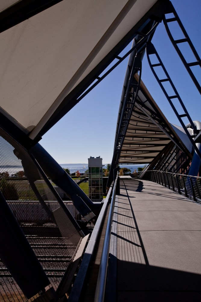 AMGEN, DNA Bridge (5/6)