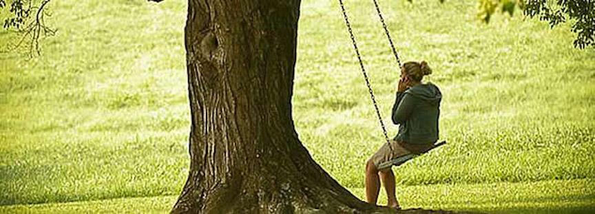 berry swing