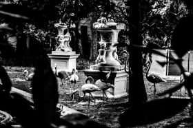 Alexandra Grippa 003, Wonderland - Villa Invernizzi