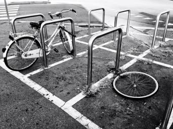 Paola Zanacca 003, Ladri di biciclette in Piazzale Udine