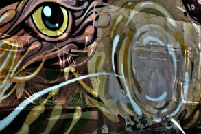 silvia questore graffiti strappati 05