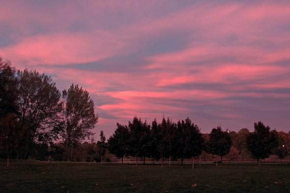 tramonto al forlanini daniela loconte foto 1