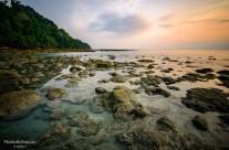 A fresh look at Radhanagar beach