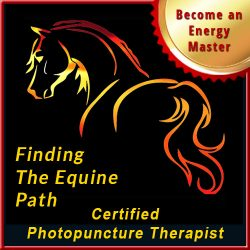 Finding the Equine Path