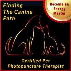 Finding the Canine Path