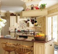 French kitchens design photos