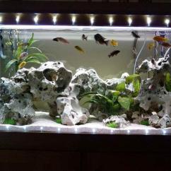 Interior Decoration Ideas For Small Living Room Simple Design Indian Style Aquarium Photos