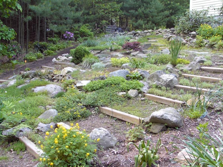 Photos Rock Garden Slopes