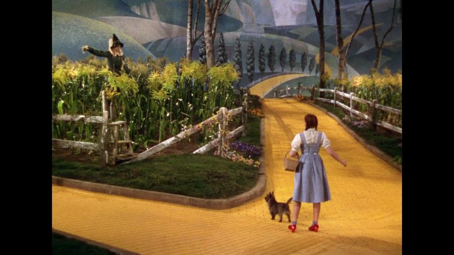 Dorothy yellow brick road photo