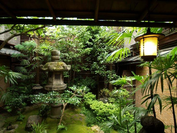 Tropical Garden Courtyard Photos