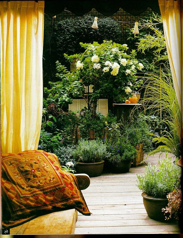 u0026quot yarrabee native garden u0026quot