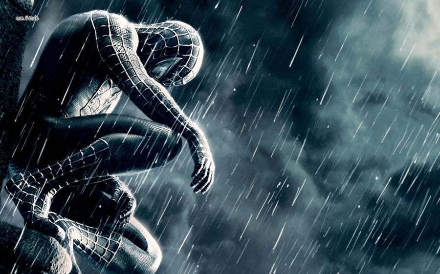 Animated Spider Wallpaper Spiderman 3d Wallpaper Photos