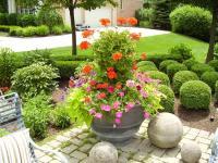 Outdoor Flower Pot Arrangement Ideas | www.imgkid.com ...