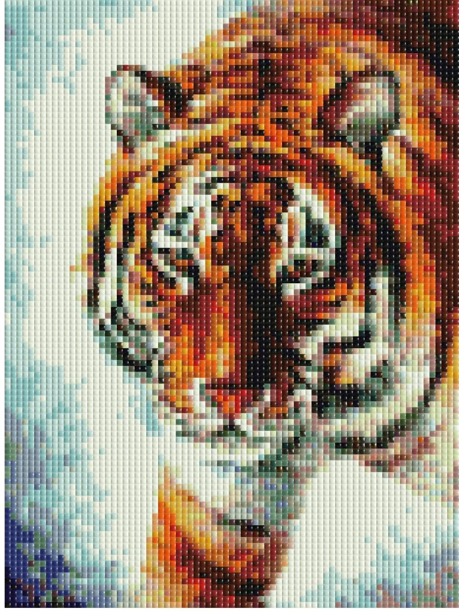 Photo tile mosaic software