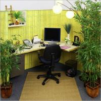 Small office interior design photos