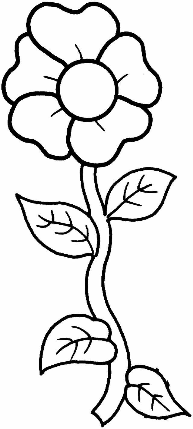 Coloring Single Flower Petal Coloring Pages
