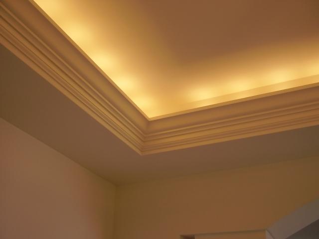Pan ceiling photos