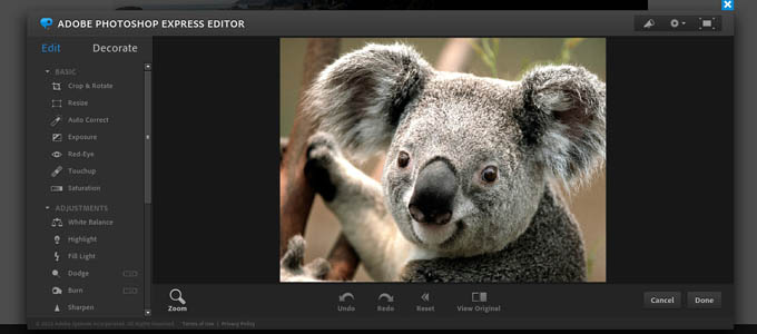 adobe photoshop express editor online photo editing tool