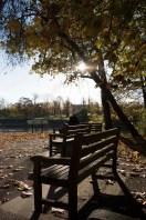 twickenham_riverside_16-11-19_17_1500