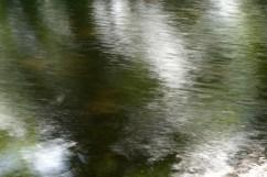 bushy_water_17-06-03_05_sec_seq_1_100_low