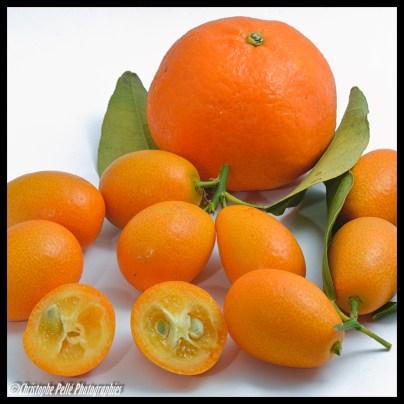 kumquats et clementine