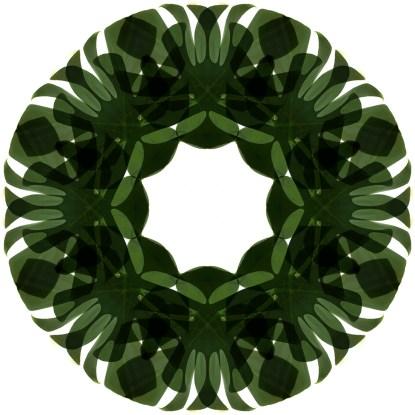 dark green circle mandala