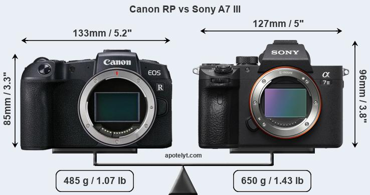 Canon EOS RP camera comparisons with Nikon Z6. Canon R and Sony a7III - Photo Rumors