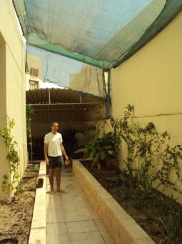 Marc standing in a fairly narrow yard, with a tiled path. Planters have been built up on either side, and there is a green shade netting on a high frame. The planters are fairly sparse, but there is a papaya tree and a banana tree with a Bird of paradise, some cannas, and some cactus.