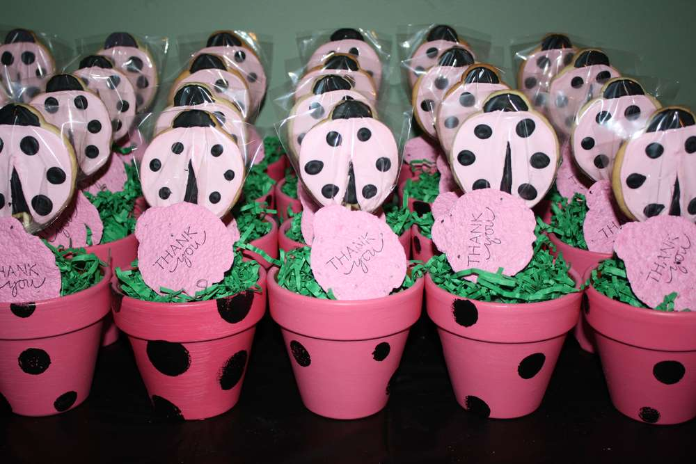 Ladybug Pink And Black Birthday Party Ideas Photo 1 Of
