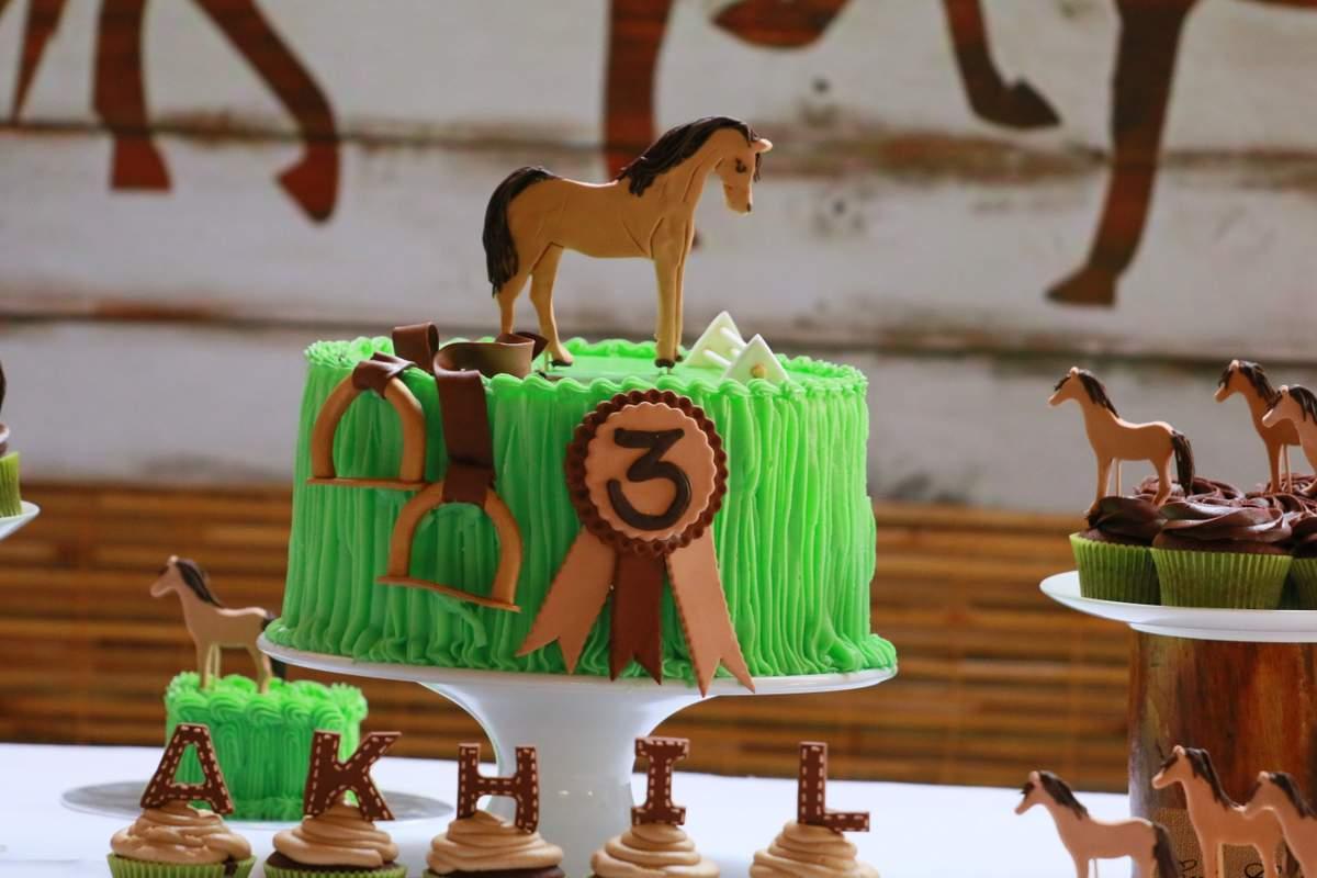 PonyHorse Birthday Party Ideas Photo 1 Of 27 Catch My