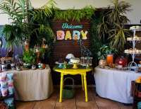 "Safari Theme / Baby Shower ""Safari Theme ""Fisher Price ..."