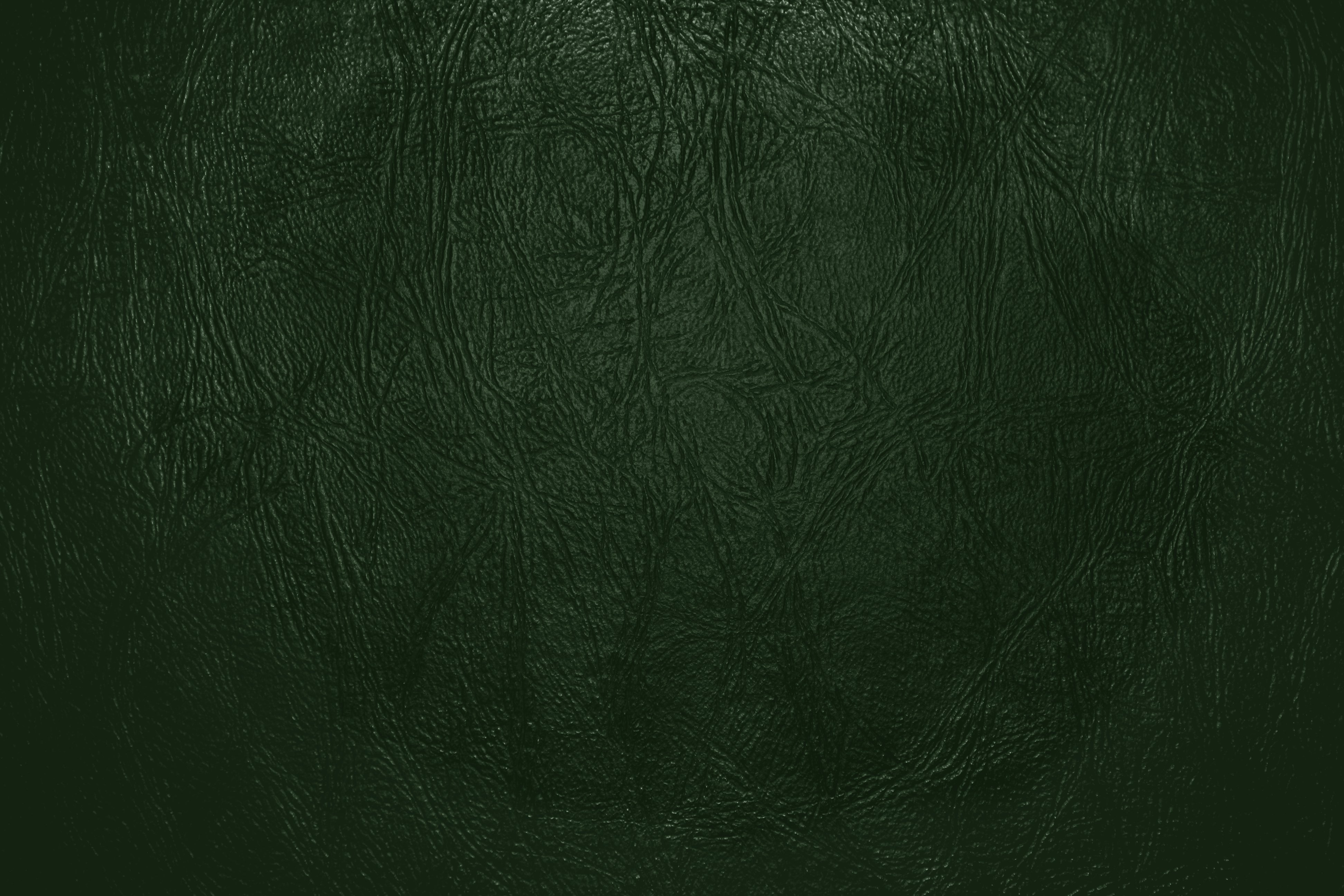 Forest Green Leather Close Up Texture  Photos Public Domain