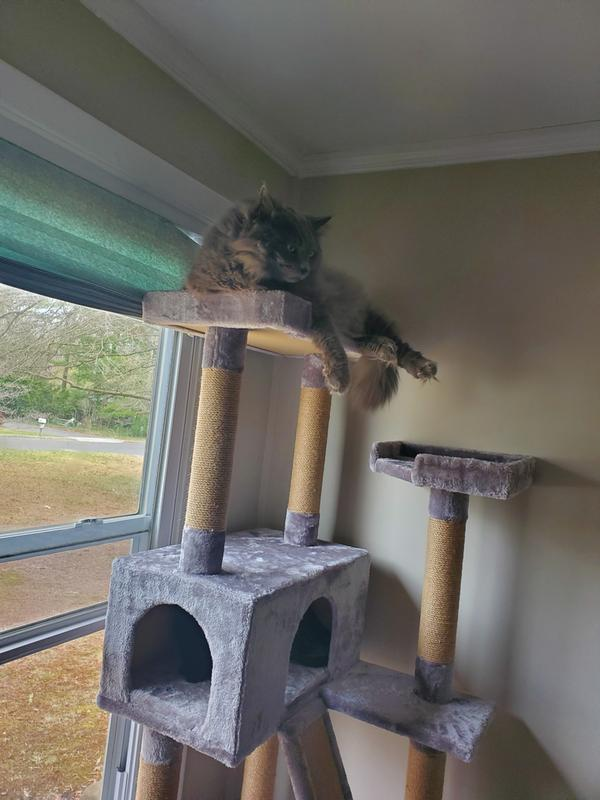 Whisker City Cat Tree : whisker, Whisker, City®, Plush, Mansion, Tower, Furniture, Towers, PetSmart