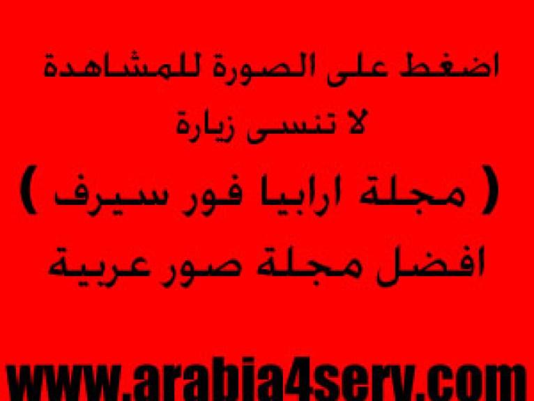 https://i0.wp.com/photos.arabia4serv.com/out.php/i35582_1865.picvip.jpg?resize=766%2C575&ssl=1
