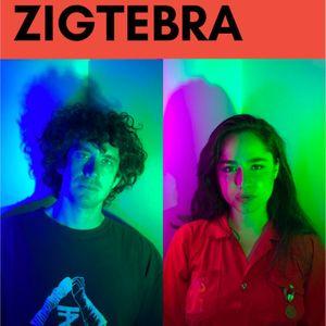 bandsintown zigtebra tickets indie