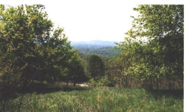TBD Point Lookout Mountain Independence VA 24348 MLS