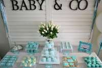 TIFFANY & CO Baby Shower Party Ideas | Photo 1 of 11 ...