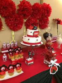 Ladybugs Baby Shower Party Ideas   Photo 2 of 10   Catch ...