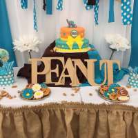 Peanut Baby Shower Party Ideas | Photo 12 of 17 | Catch My ...