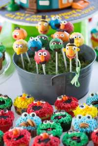 Sesame Street Baby Shower Party Ideas | Photo 6 of 60 ...