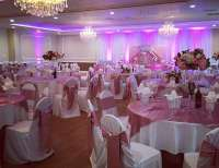 "Pink Princess Sweet 16 / Birthday ""Pretty In Pink Sweet 16 ..."