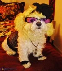 80s Madonna Dog's Costume