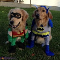 Batman and Robin Costumes for Dogs