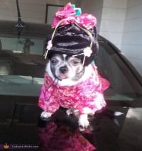 Geisha Girl Dog's Costume