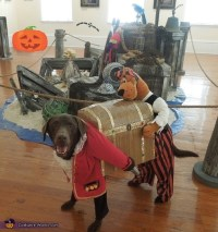 Dog Pirate Carrying Treasure Chest - DIY Costume for Dogs