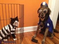 Cat Burglar and Dog Officer