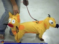 CatDog - Costume Ideas for Pets