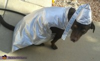 Chocolate Hershey Kiss Dog Costume